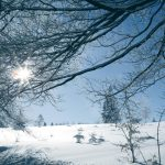 winterwandelen