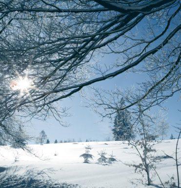 last-minute-naar-winterberg